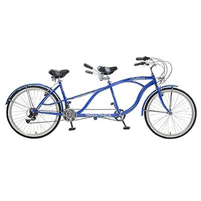 Hollandia Rathburn Tandem Bicycle