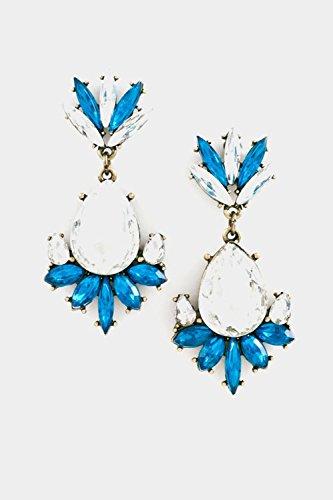 Karmas Canvas Crystal Floral Dangle Earring (Erickson Beamon Chandelier Earrings)