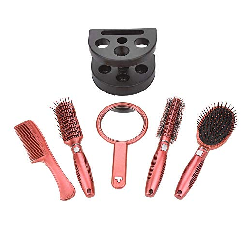5 Pcs Hair Comb Set - Professional Salon Styler Hair Brushes Gift Set Tool with Mirror And Holder Stand - Hair Care Massage Brush for Women Ladies with Thick, Straight, Curly Natural Hair (Comb Brush Mirror Set)
