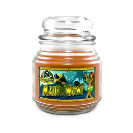 Lot Of  3  16Oz Round Jar Headshop Brown Candles 100  Palm Wax  Maui Wowi