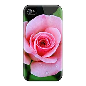 Tpu Case Cover Compatible For Iphone 4/4s/ Hot Case/ Pink Rose