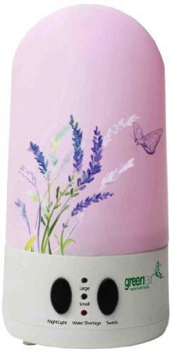 Greenair Aquamist Advanced Aromatherapy Diffuser for Instant Mist Wellness, 1 Pound, Health Care Stuffs