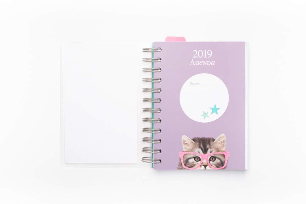 Grupo Erik Editores AGEDP1913 - Agenda anual 2019 con diseño Studio Pets Cat, día pagina