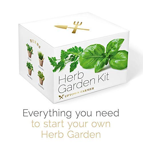 Herb Growing Kit - Indoor Garden Starter Set for Kitchen Windows or Light Windowsills with Heirloom Seeds, Peat Pots, Peg Markers and Soil Disks by Uptown Farmer (Image #6)