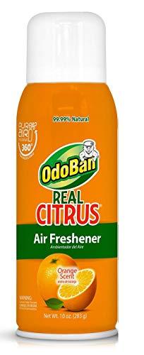 OdoBan Real Citrus Air Freshener, Orange (10oz., ()