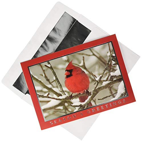 Cardinal Snow - Masterpiece Holiday Collection 18-Count Christmas Cards with Foil Lined Envelopes, Snow Cardinal