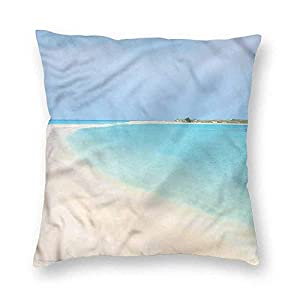41ef%2B4VUm1L._SS300_ 100+ Coastal Throw Pillows & Beach Throw Pillows