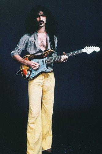 Frank Zappa Concert 24x36 Poster