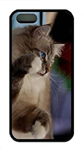 cases customized kitty blue eyes hd TPU Black Case for iphon 5/5S