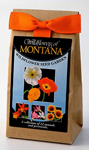 Montana Wildflowers - Seed Mix - A Beautiful Collection of Twelve Annuals and Perennials - Enjoy the Natural Beauty of Montana Flowers in Your Own Home Garden