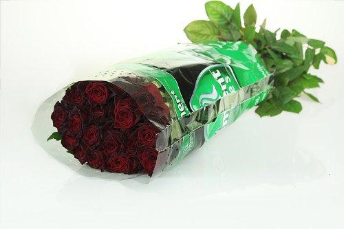 10 schwarze Rosen (Black-Baccara) im Bund - unbearbeitet!