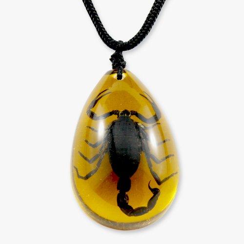REALBUG Black Scorpion Necklace, Amber, large