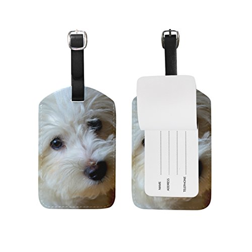 Blue Viper White Dog Cute Bichon Frise PU Leather Luggage Tags Personalized (Bichon Leather Luggage Frise Tag)