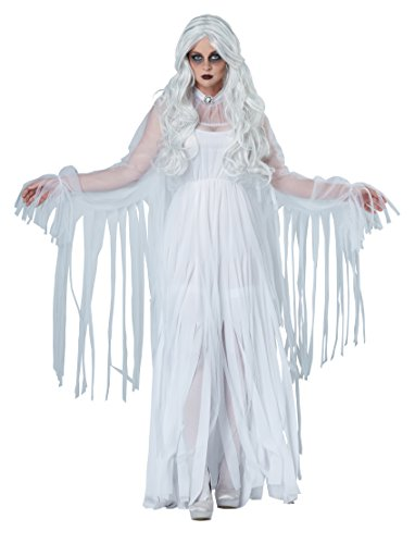 Halloween White Ghost Costume (California Costumes Women's Ghostly Spirit, White,)