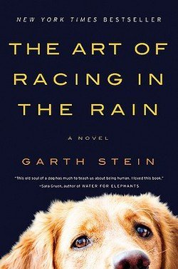 Garth Stein: The Art of Racing in the Rain (Paperback); 2009 Edition ()