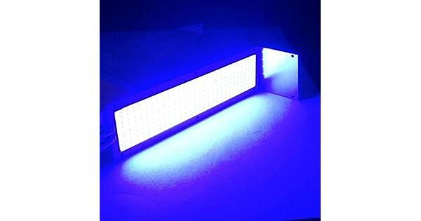 Amazon.com: iuhan® COB rayas luz, venta de liquidación ...