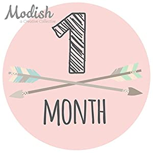 12 Monthly Baby Stickers, Pink, Gray, Tribal, Arrows, Chevron, Baby Month Stickers Girl, Baby Book Keepsake, Baby Shower Gift 2