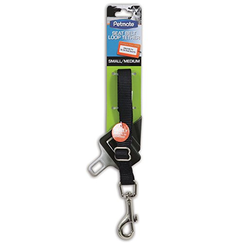 Image of Petmate 11482 Seat Belt Loop Tether for Pets, Small/Medium, Black