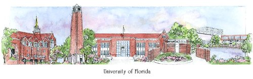University of Florida - Collegiate Sculptured Ornament by Sculptured Watercolor Ornaments