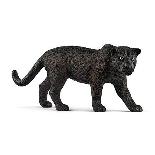 black jaguar amazon com