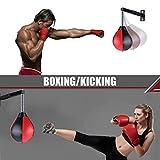 Speed Bag Boxing Punching Bag Wall-Mounted Height