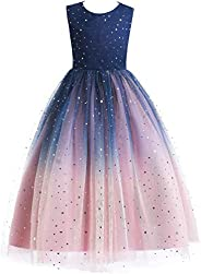 Glamulice Lace Girls Wedding Dress Embroidered Flower Princess Sparkle Tulle Birthday Party Dresses 2-14Y