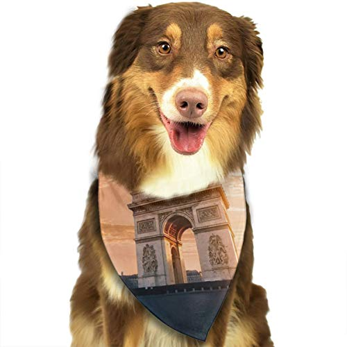 Pet Scarf Dog Bandana Bibs Triangle Head Scarfs Paris Building Accessories for Cats Baby Puppy
