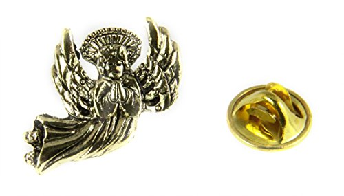 6030458 Healing Angel Lapel Pin Guardian Nurse Doctor Brooch Tie Tack RN Medical Nursing School ()
