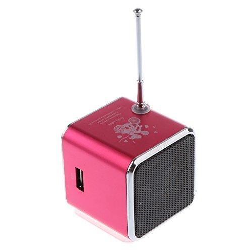 MagiDeal Portable Mini FM Radio Speaker Music Player, Suppor