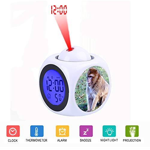 LCD Digital LED Display Projection Alarm Clock Talking with Voice Thermometer Function Desktop Brown Monkey on Green Grass During Daytime