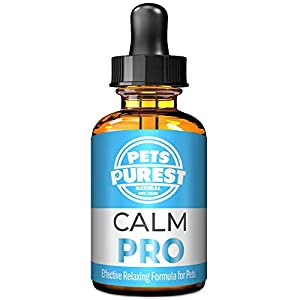 Pets Purest 100% Natural Calm PRO Dog Anxiety Reli...