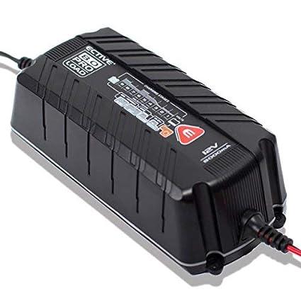 Ective Proload | Cargador de batería para coche/motocicleta | 2 ...