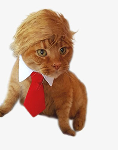 Trump Style Pet Costume Cat Wig, Donald Dog Clothes with Collar & Tie Head Wear Apparel Toy for Halloween, Christmas, parties, festivals by (Halloween Party Dogs)
