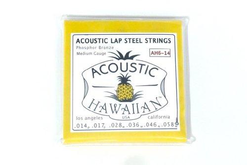 Steel Guitar Acoustic Lap (Asher Acoustic Hawaiian Lap Steel Strings, Single Set)