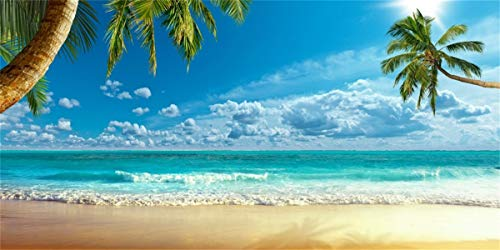 (LFEEY 20x10ft Beach Photography Studio Backdrop Island Seaside Palmtree Background Vacation Blue Sky Clouds Adult Kid Girl Boy Lovers Artistic Portrait Scenic Photoshoot Props Video Drape)