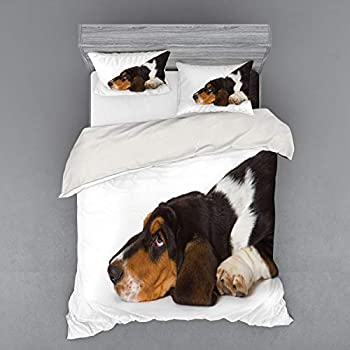 Image of Ambesonne Basset Hound Bedding Set, Dog Innocently Lying Side Studio Shot Photo, 4 Piece Duvet Cover Set with Shams and Fitted Sheet, Queen Size, Dark Taupe Coconut Ginger and White Home and Kitchen