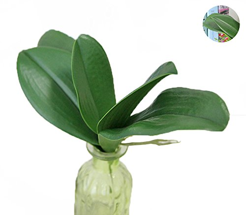 Conjugal Bliss 1PC High Simulation Plant 5 Leaves Butterfly Orchid Green Leaf Banana Leaf PU Flower Leaves Artificial Flowers Home Wall Decoration Hotel Party Wedding Adornment Fake Flowers (green)