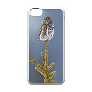 Cute Owl High Quality Pattern Hard Case Cover for Iphone Case 5C HSL439926