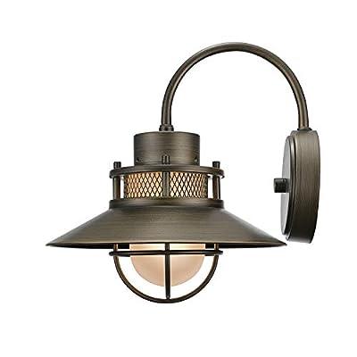 Globe Electric Liam 1-Light Outdoor Pendant
