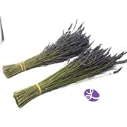 """Findlavender - Lavender Dried Premium Bundles - Can Be Used for Any Ocassion - Perfect for your wedding 18""""- 22"""" L - 2 Bundles"""