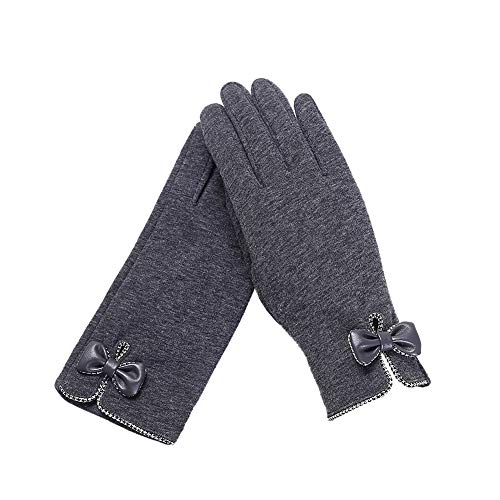 Biback Women's Windproof Touch Screen Winter Thick Warm Smart Texting Gloves