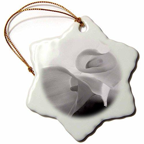 3dRose Danita Delimont - Abstract - Black and White Calla Lily - 3 inch Snowflake Porcelain Ornament (orn_228190_1) ()