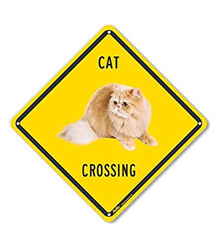 10 x 10 PetKa Signs and Graphics PKAC-0653-NP/_10x10Cat Crossing Plastic Sign