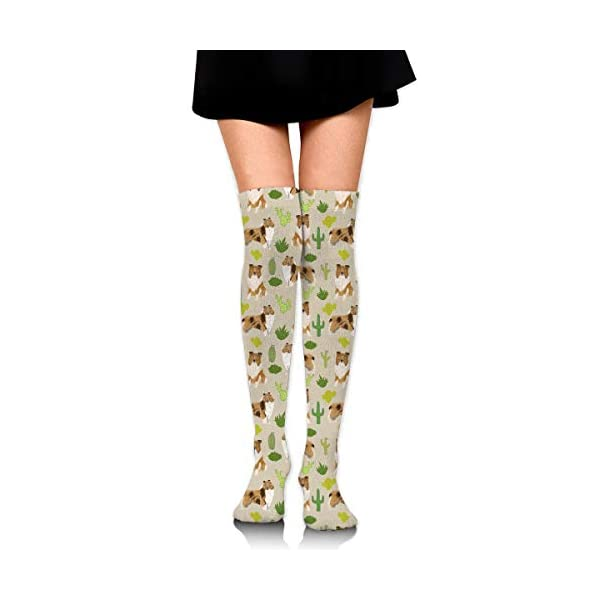 QG ZZX Rough Collie Cactus Design Womens' Knee High Socks Casual Compression Stockings for Running Sports Soccer Socks Stocking for Women 1