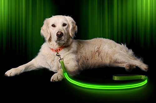 LED-Dog-Leash-USB-Rechargeable-Your-Dog-Will-Be-More-Visible-Safe-6-Colors-Red-Blue-Green-Pink-Orange-Yellow-Perfect-To-Use-With-Our-Matching-Illumiseen-Collar-6-Feet-Green