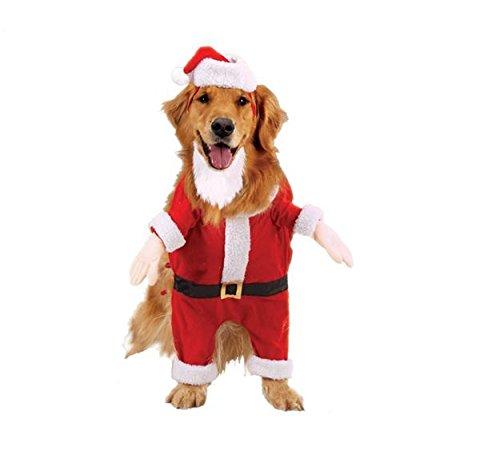 Casual Canine Kris Kringle Costume Xsm - Kris Kringle Costumes