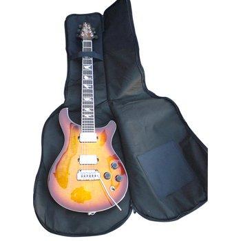 Funda para guitarra eléctrica Spider: Amazon.es: Instrumentos musicales