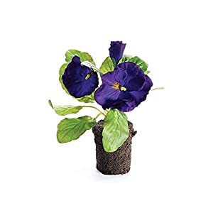 "Napa Home & Garden Pansy Drop-in 6.5"" Purple 92"