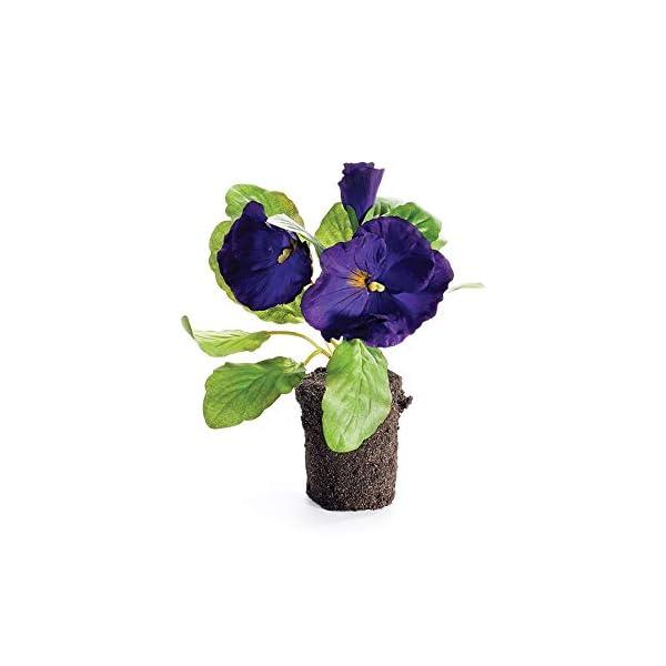 Napa Home & Garden Pansy Drop-in 6.5″ Purple