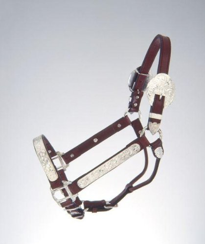 Yearling Show Halter (Tough-1 Royal King Yearling/Cob and Horse Silver Show Halter. Western Showmanship Halter)